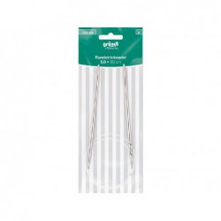 Dazzling Dragonfly