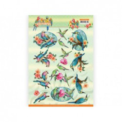 animals owl & hedge hog...