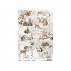 Kat met 3 kittens 4 ST...